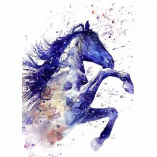Vinyltryck Häst blå 20x14