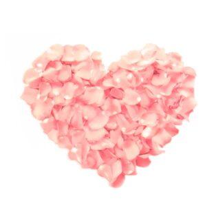 Vinyltryck Hjärta rosa blommor - 8x7