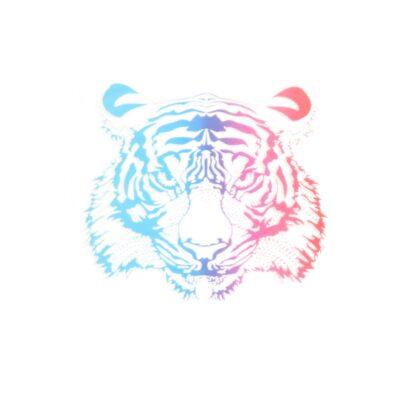 Vinyltryck Tiger - 8x8