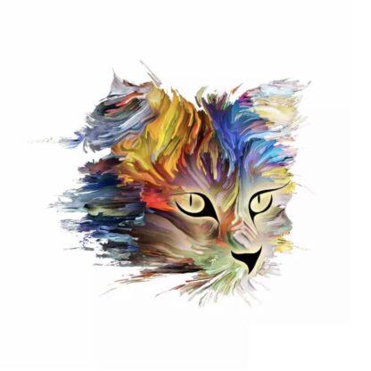 Vinyltryck katt färger 20x17