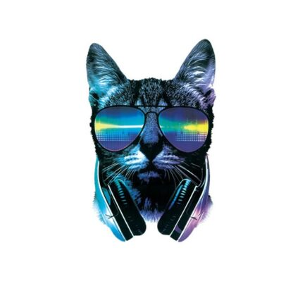 Vinyltryck cool cat 26x16