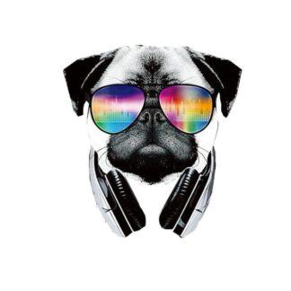 Vinyltryck cool pug 20x22