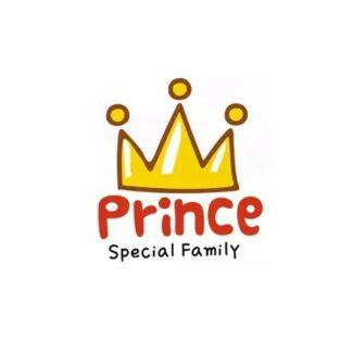 Vinyltryck prince 16x15