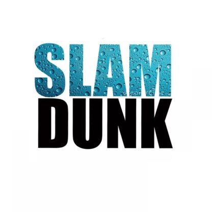Vinyltryck slam dunk 15x20