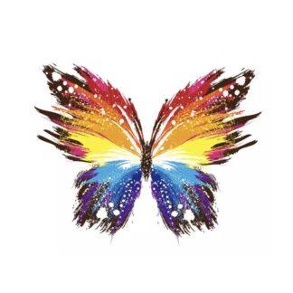 vinyltryck Fjäril regnbåge 22x18