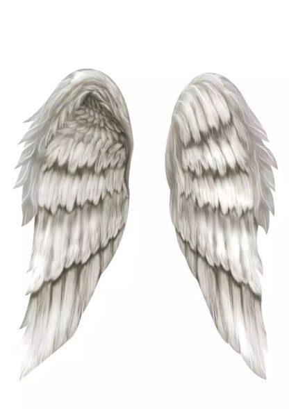 vinyltryck vingar I have a dream I can fly 27x19cm