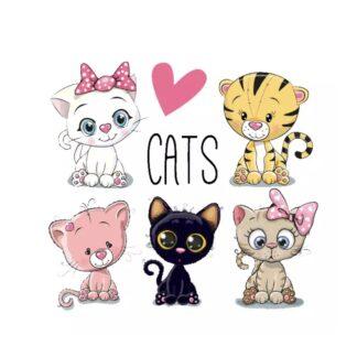 vinyltryck M cats 5 st 12x13