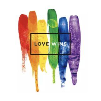 vinyltryck L pride love wins 25x22